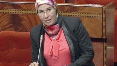 صورة الوافي: وضعنا برنامج وطني لتعبئة الكفاءات المغربية بالخارج